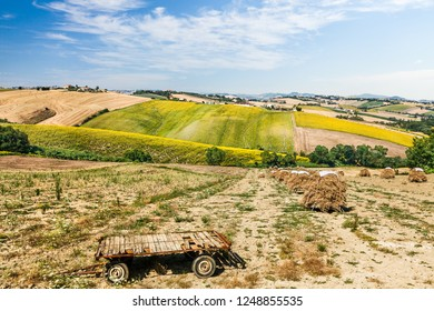 Tuscany, Italy - July 4, 2015: Rural landscape in Tuscany, Italy
