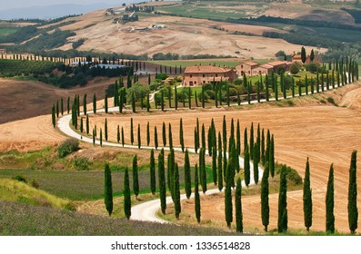 Tuscany, Italy - July 5, 2018: Cypress trees and meadow with typical tuscan house, Val d'Orcia, Italy - Tuscany