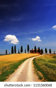 Tuscany, Italy - June 05, 2017.:  Iconic farmland I Cipressini, italian cypress trees and rural white road in spring, wheat cultivation on the side. Located in Siena countryside.