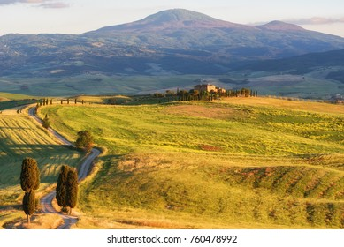 Tuscany, Italy - May 26, 2017: Magnificent spring landscape at sunset.Beautiful view of typical tuscan farm house, green wave hills, cypresses trees, magical sunlight, beautiful golden fields and mead