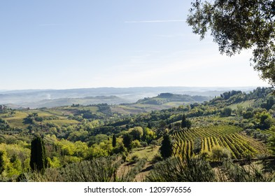 Tuscany, Italy - October 3, 2018: Green rolling hills landscape by the village San Gimignano in Tuscany, Italy