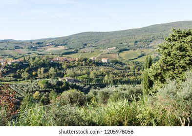 Tuscany, Italy - October 3, 2018: Beautiful Tuscany landscape with sunlit green rolling hills by the village San Gimignano in Italy