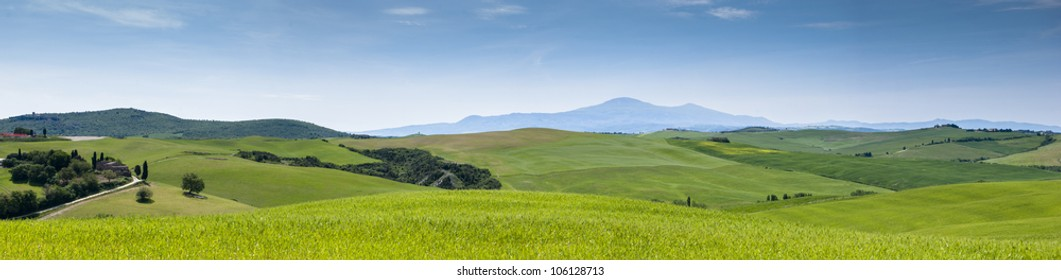 Tuscany landscape made of meadows,  green hills and the Amiata mountain far in the distance