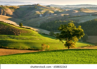 Tuscany - Landscape panorama, hills and meadow, Toscana, Pienza - Italy