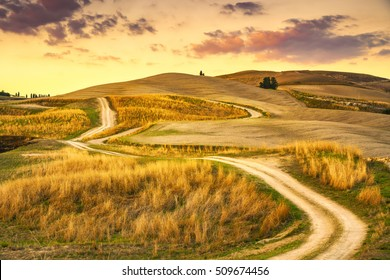 Tuscany landscape, rural road and green field on sunset. Volterra Italy Europe