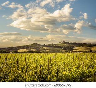Tuscany landscape in Val d'Orcia between Sant'Angelo Scalo and Cinigiano - 05/23/2016