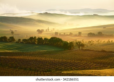 Tuscany lanscape in misty morning light
