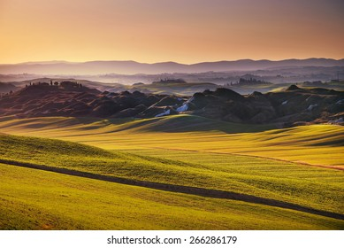 Tuscany, rolling hills on sunset. Crete Senesi rural landscape and sunlight. Green fields, a farm with trees. Siena, Italy