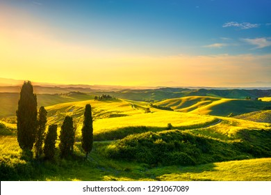 Tuscany, rural sunset landscape. Cypress trees, green field, sun light and cloud. Volterra, Italy, Europe.