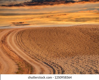 Tuscany typical sinuous land sunset