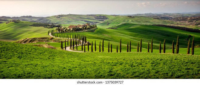Tuscany, Val d'Arbia, Siena. March 16, 2019. In the Val d'Arbia and the Val d'Orcia you can find among the most evocative Tuscan landscapes