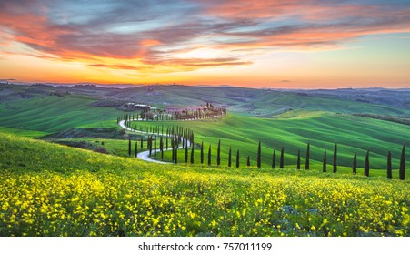 TUSCANY,ITALY-APRIL15,2016:Evening landscape and green field. meadow of Tuscany near Pienza, Italy. Sunset and cypresse alley.