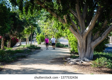 Tustin, CA / USA - 03/15/2015:  Tustin Branch Trail  is an easy accessible 2.8 mile trail in Orange County, California that features beautiful wild flowers and is good for all skill levels.