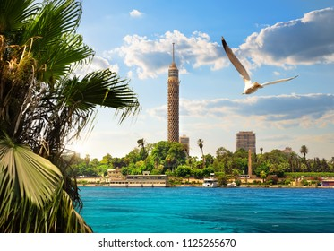 TV tower near Nile in Cairo at sunlight