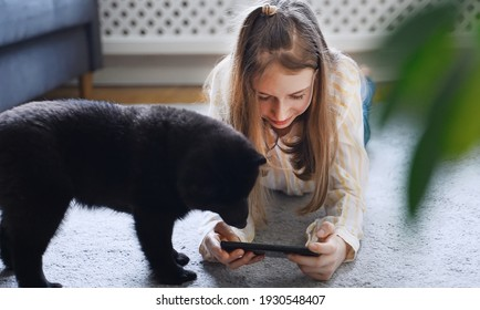 Tween girl with smartphone and curious puppy.