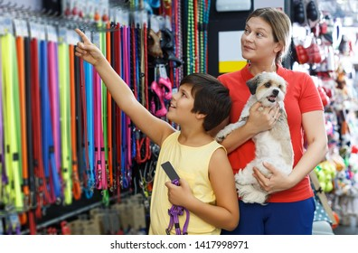 Tweenager and his smiling mother looking for supplies for little dog in petshop