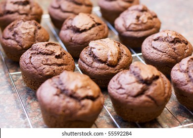 Twelve freshly baked chocolate muffins cooling off on wire mesh