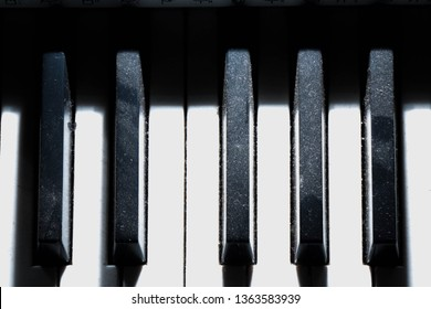 Twelve notes of music on a piano. Chromatic scale. The chromatic scale is a musical scale with twelve pitches