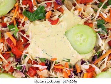 Twelve vegetables salad with sauce