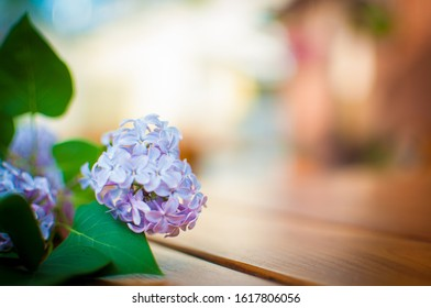 Twig of purple lilac lying on the wooden table