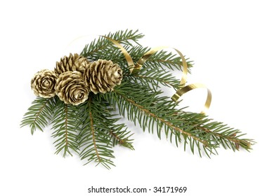Twig of the spruce decorated with cones
