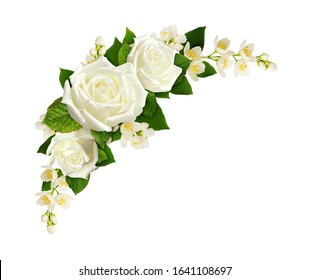 Twigs of Jasmine flowers and roses in a corner arrangement isolated on white