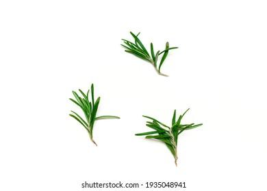 Twigs of rosemary on a white background, organic raw fresh herbs seasoning.