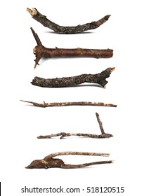 Twigs, set dry rotten branches with lichen isolated on white background