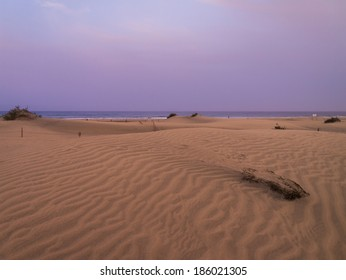 twilight above the dunes of Maspalomas at the Island of Gran Canaria