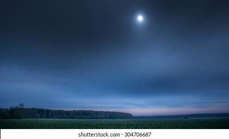 Twilight clover field under full moon, wide-screen version