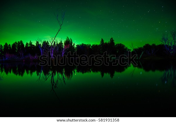 Twilight clover field under full moon, wide-screen version  ,  Dark night sky beautiful green