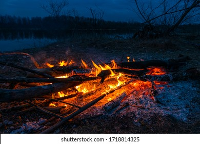 Twilight fire bonfire. Inviting campfire at camping in night