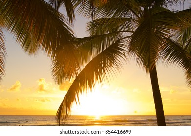 Twilight with palm tree