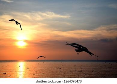 Twilight sunset from sea at Bang Pu, Thailand.