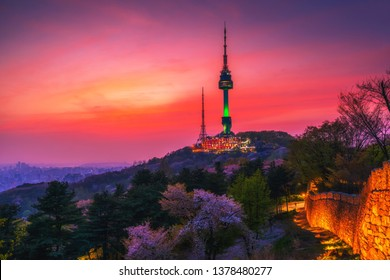 Twilight sunset in spring, cherry blossom at Seoul,South Korea.