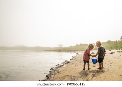 twin boys carrying a bucket on the beach