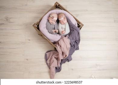 Twin Newborns in a basket.Copy space. Cute newborn baby.