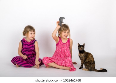 twin sisters playing with a tortoiseshell cat