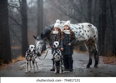 Twins sisters with Appaloosa horse and Dalmatian dogs in rainy autumn park