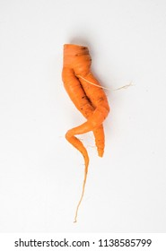 Twisted carrots on a white background. Two roots intertwined.