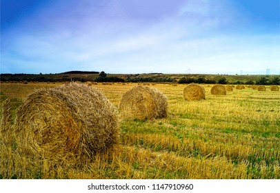 Twisted haystack on agriculture field landscape. Haystack farmland field panorama. Haystack agrisulture farm field view
