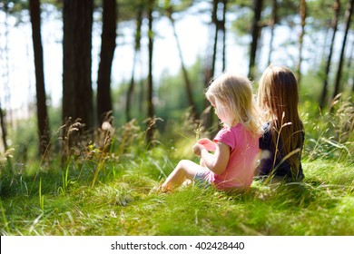 Two adorable little sisters hiking in a forest on warm and sunny summer day