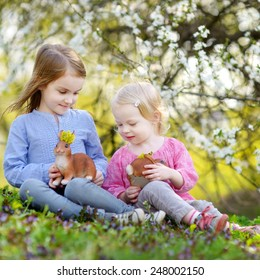 Two adorable little sisters playing with Easter bunnies in blooming spring garden on Easter day