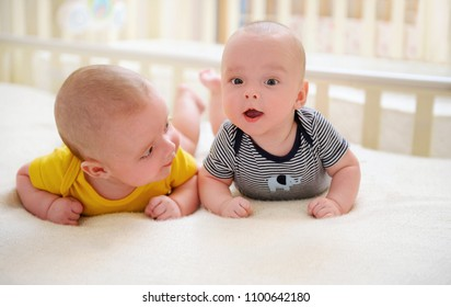 Two adorable twin babies learning to stand on arms. Cute kids during tummy time. Nursing multiples