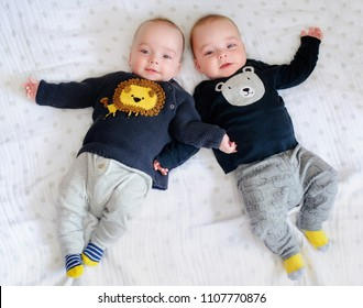 Two adorable twin babies smiling happily. Positive lifestyle concept. Happy childhood. View from above
