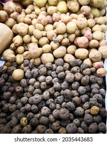"""Two ancient local varieties of potatoes: dark (variety """"bonita negra"""") and light (""""bonita blanca"""") grown in Canary Islands for traditional dish """"papas arrugadas"""" (wrinkled potato) in shop in Lanzarote"""