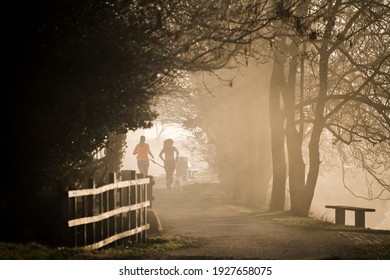 Two anonymous women jogging in park misty fog early morning dawn with dog as sun rises rays of light through trees in silhouette peaceful and scenic running away from camera single lone empty bench