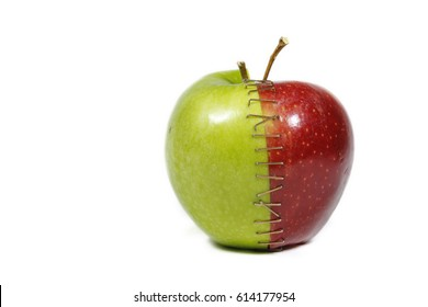 Two apple halves bound together, Red and green apple stapled together
