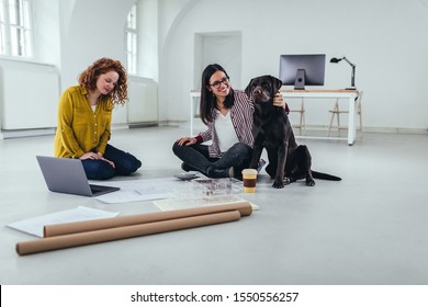 Two architects with dog working on a new building design
