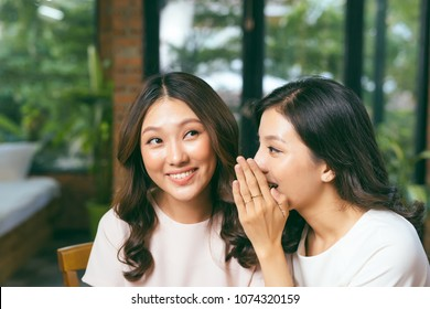 Two asian women friends chatting and gossipping